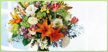 Acquisto e sistemazione di fiori al cimitero